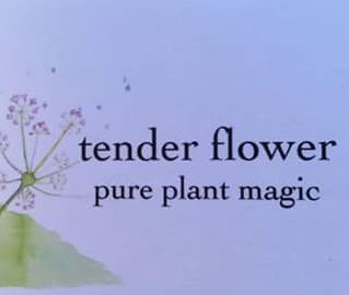 tenderflowerlogo
